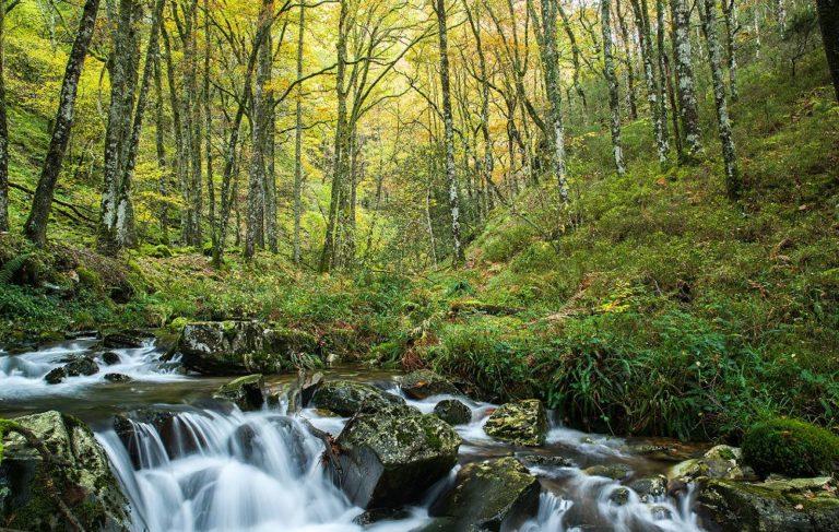 La Ruta del Agua: Esquíos – Mazonovo – Teixois